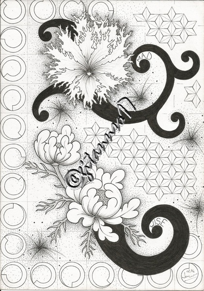 fleurs & graph